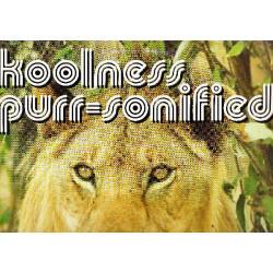 KOOLNESS PURR SONIFIED ( 2 LP )