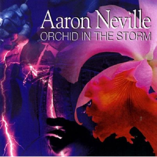 NEVILLE, AARON - ORCHID IN THE WINDSTORM