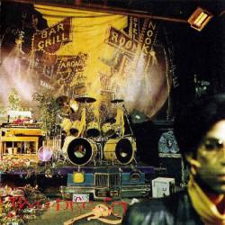 PRINCE - SIGN O' THE TIMES ( 2 LP )