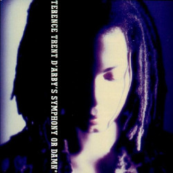 TERENCE TRENT D' ARBY - SYMPHONY OR DAMN
