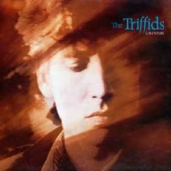 TRIFFIDS,THE - CALLENTURE