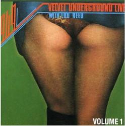 VELVET UNDERGROUND,THE - THE VELVET UNDERGROUND WITH LOU REED LIVE 1969 ( 2 LP )