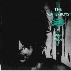 WATERBOYS,THE - A PAGAN PLACE
