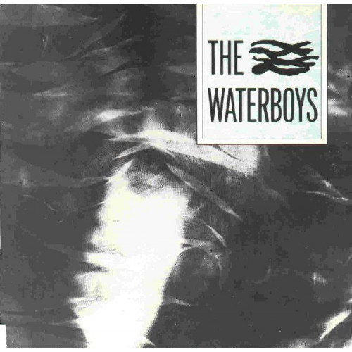 WATERBOYS,THE - THE WATERBOYS