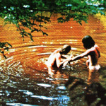 WOODSTOCK ( 3 LP )